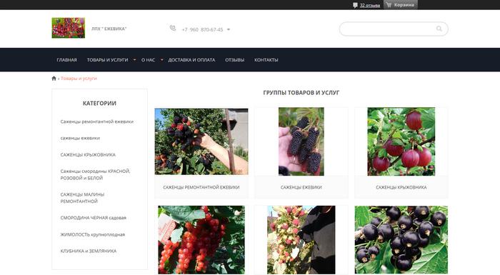 ЛПХ «Ежевика» - саженцы ягодных культур