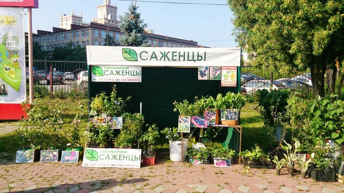 Питомник «ЛПХ УралСад Саргазы» в Челябинской области