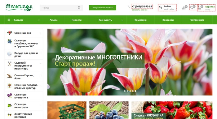 «МультиСад» - Интернет магазин саженцев и семян