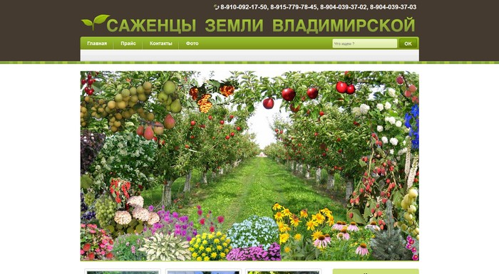 Питомник «Саженцы земли Владимирской»